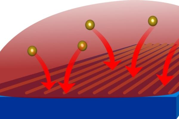 Gold nanoparticle directed assembly
